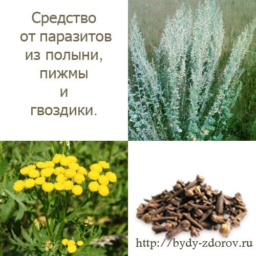 смесь трав от паразитов